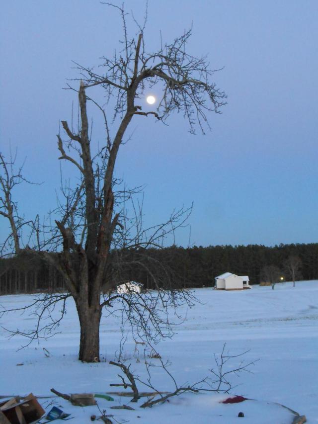 moonrise6292