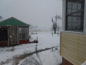 snowing1sm