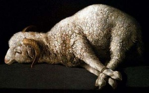 Jesus-is-the-lamb-of-God-slain-before-the-creation-of-the-world-300x187