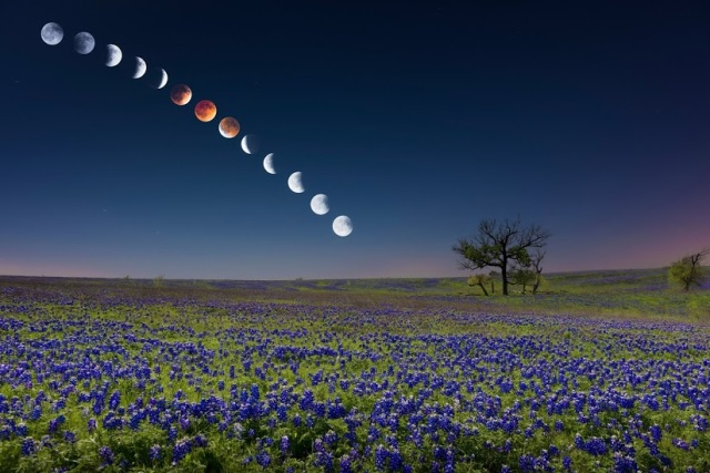 Cool Image of Blood Moon Sequence