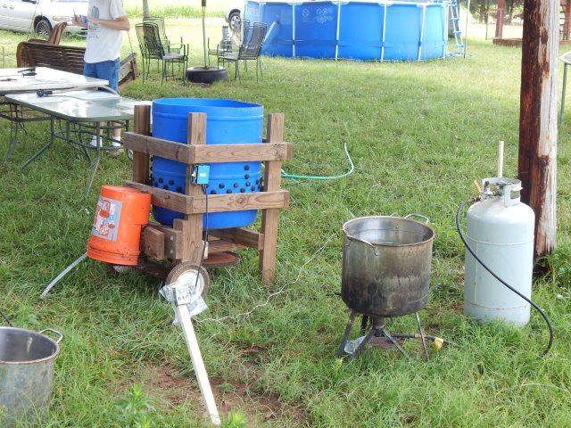We set up in a line with several 'stations.'  Here is the scald and de-feather station. Pictured is a homemade chicken plucker using Miles Kimball's 'Whizbang Chicken Plucker' plans.  45 seconds to pretty much strip a bird.  Notice the thermometer prob in the water with reader mounted on a stake.  We find 153 degrees is the right temp for scalding the birds to release the feathers.