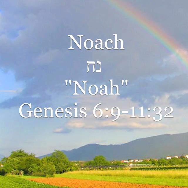 Noach by Steve King